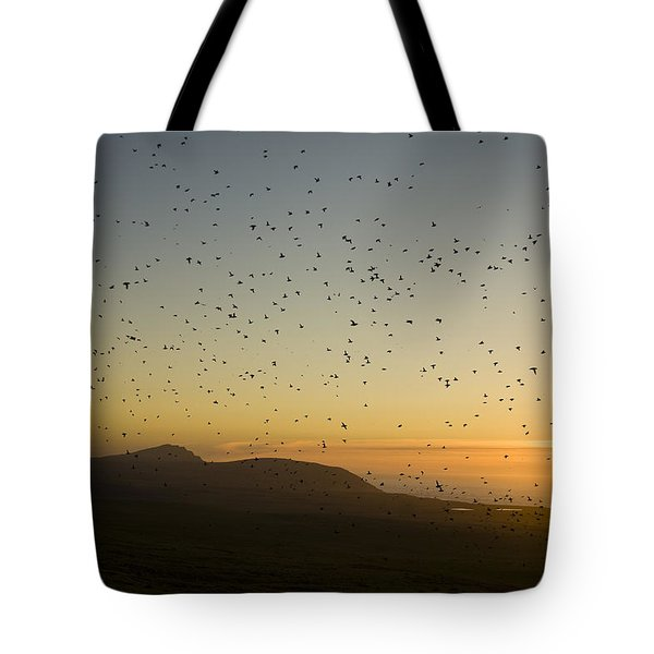 Least Auklets, Returning To Their Nest Tote Bag by Brian Guzzetti