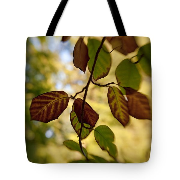 Leaves in the Breeze Tote Bag by Venetta Archer