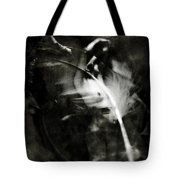 Leda And The Swan Tote Bag by Rebecca Sherman