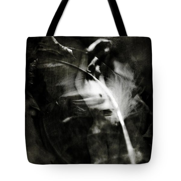 Leda and the Swan Tote Bag by Rebecca Sherman
