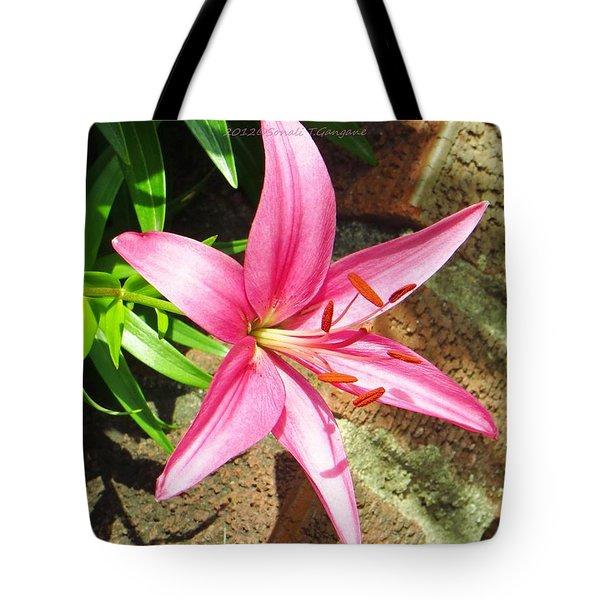 Leiron Tote Bag by Sonali Gangane