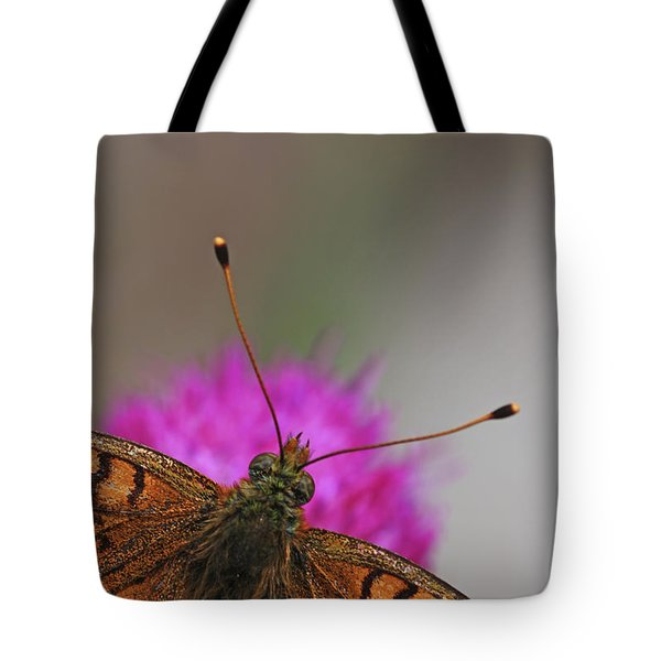 Lesser Spotted Fritillary Tote Bag by Amos Dor