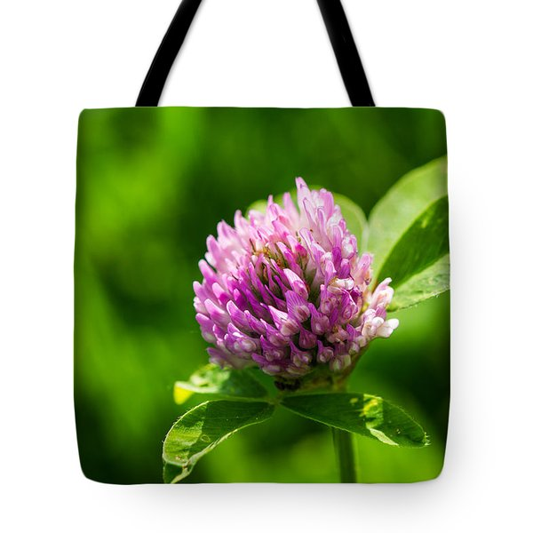 Let Us Live In Clover - Featured 3 Tote Bag by Alexander Senin