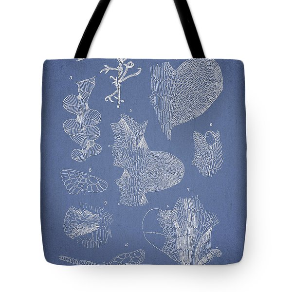 Leveillea jungermannioides Tote Bag by Aged Pixel