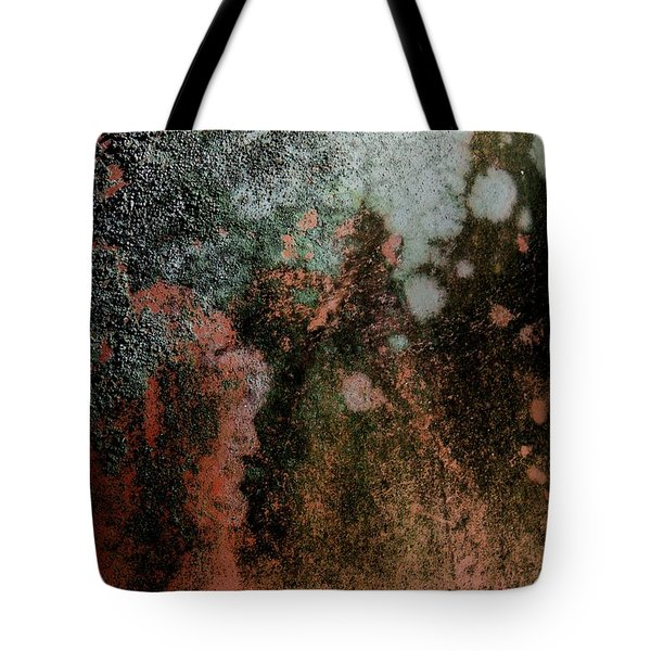 Lichen Abstract 2 Tote Bag by Denise Clark