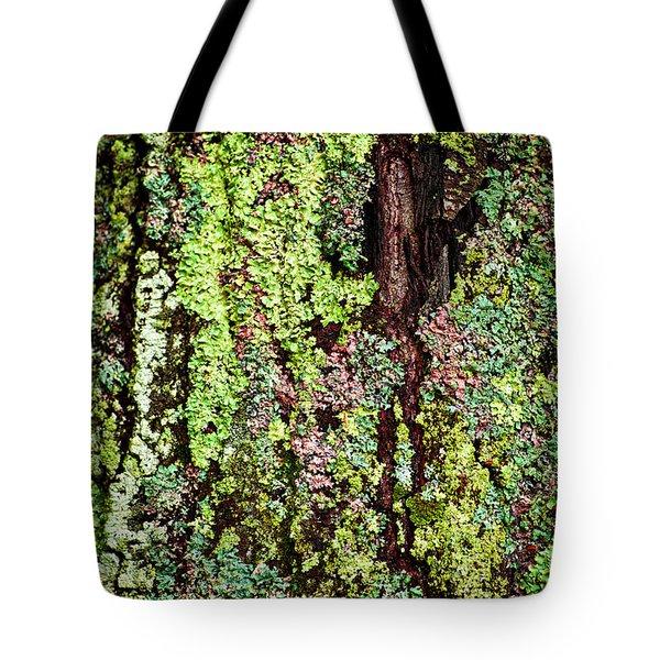 Lichen Tote Bag by Elena Elisseeva