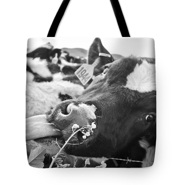 Licking The Picture Frame Tote Bag by Priya Ghose