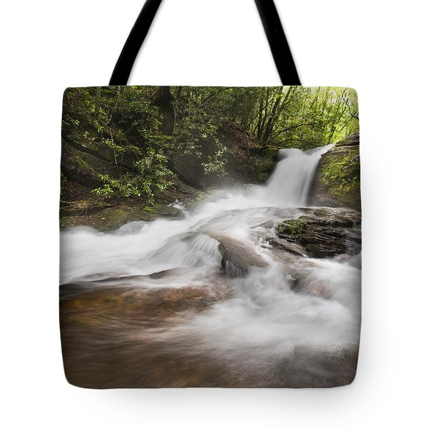 Light In The Forest Tote Bag by Debra and Dave Vanderlaan