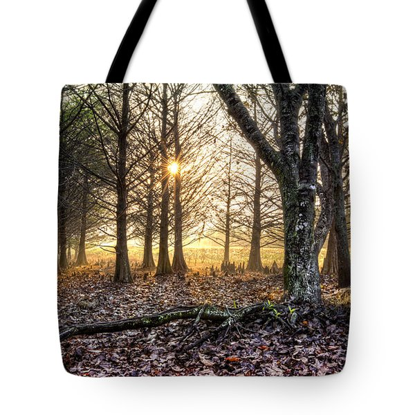 Light in the Trees Tote Bag by Debra and Dave Vanderlaan