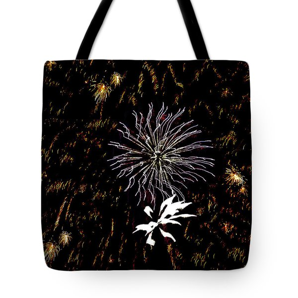 Lighting Up The Sky Tote Bag by Aimee L Maher Photography and Art