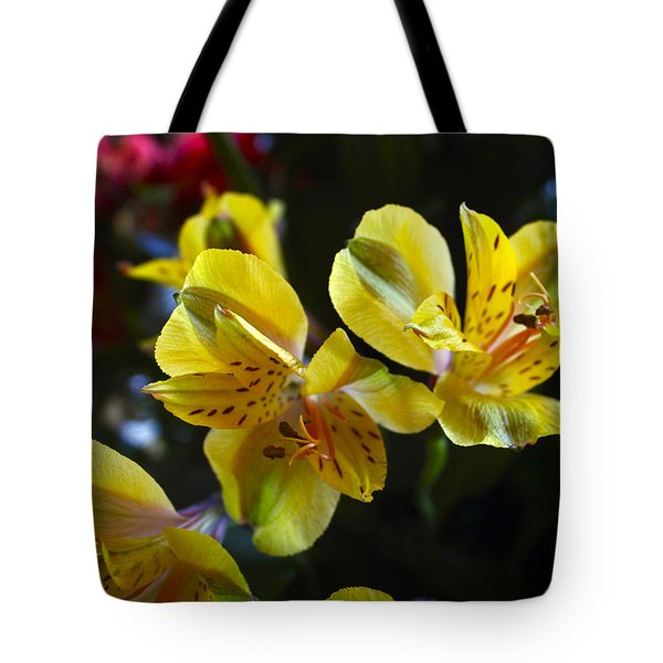 Lily Of The Incas Tote Bag by Kurt Van Wagner