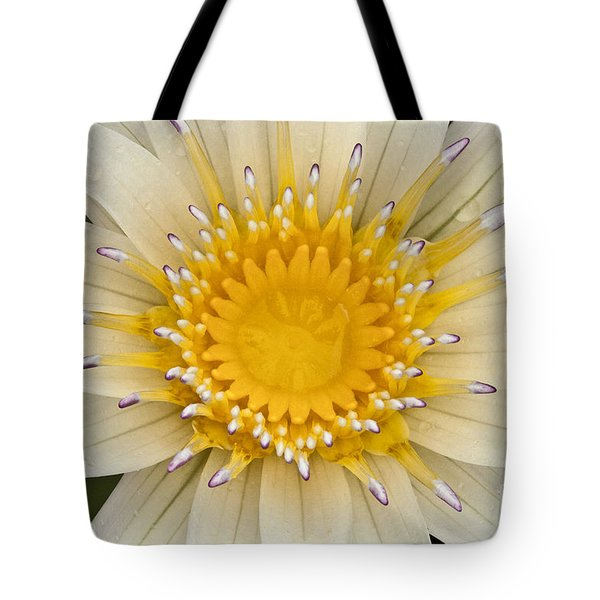 Lily Of The Lake Tote Bag by Heiko Koehrer-Wagner