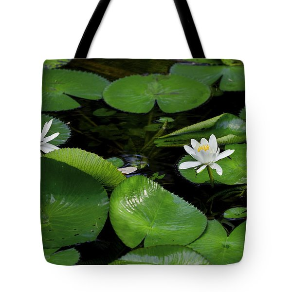 Lily Pads And Blossoms Tote Bag by Rich Franco