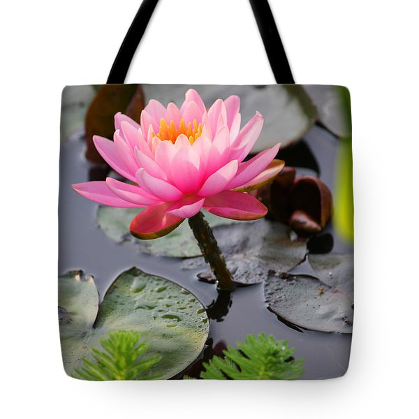 Lily Pink Tote Bag by Carolyn Stagger Cokley