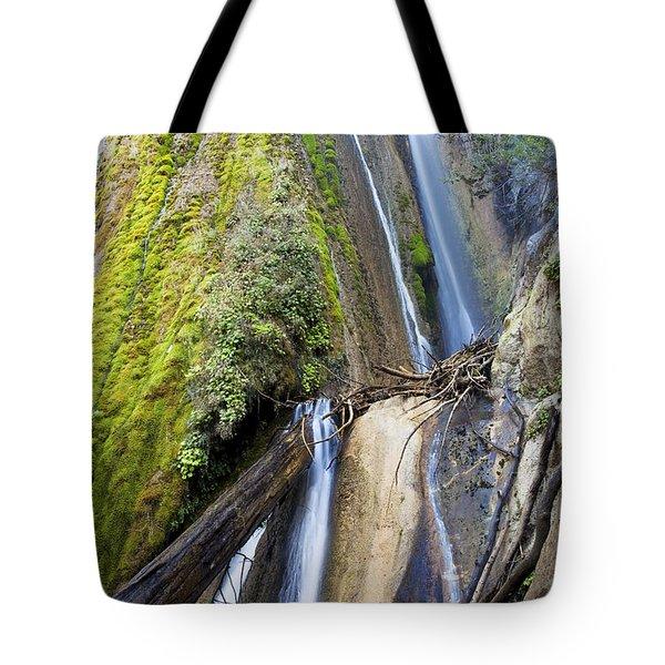 Limekiln State Park Tote Bag by Jenna Szerlag