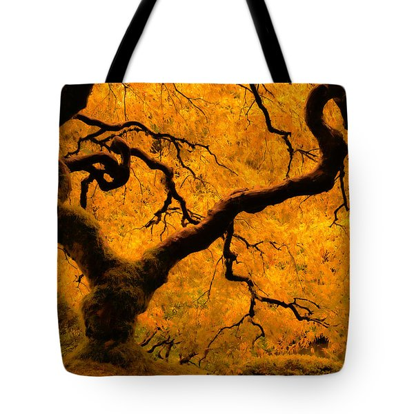 Limned In Light Tote Bag by Don Schwartz