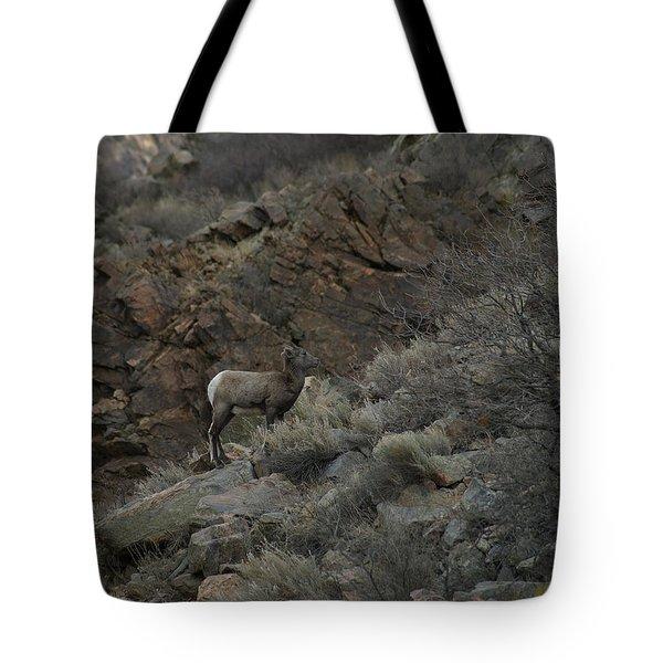 Little Bighorn Tote Bag by Ernie Echols