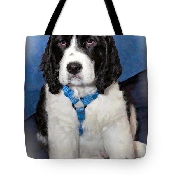 Little Boy Blue Oil Tote Bag by Steve Harrington