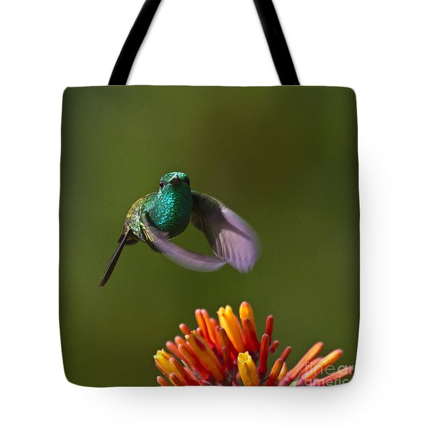 Little Hedgehopper Tote Bag by Heiko Koehrer-Wagner