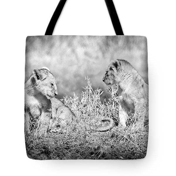Little Lion Cub Brothers Tote Bag by Adam Romanowicz