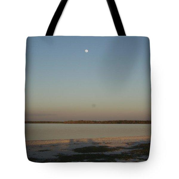 Little Moon Tote Bag by Robert Nickologianis