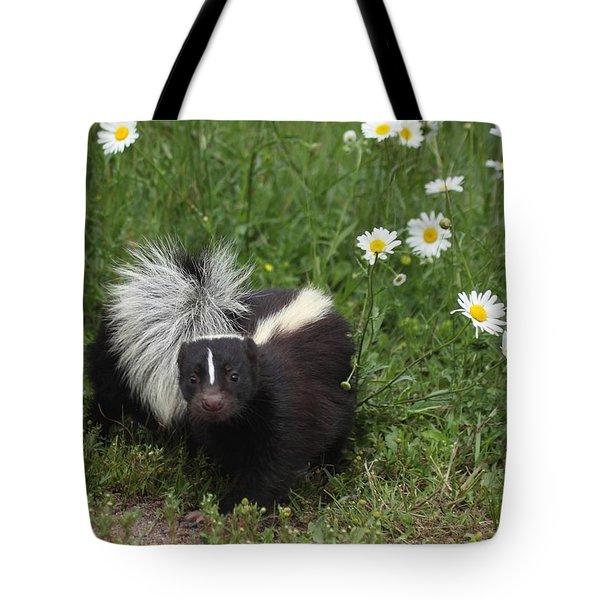 Little Stinker Tote Bag by Myrna Bradshaw