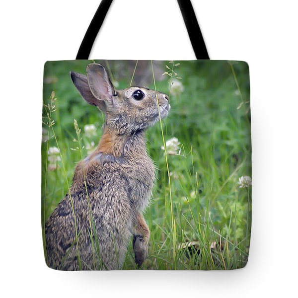 Live In Clover Tote Bag by Brian Wallace