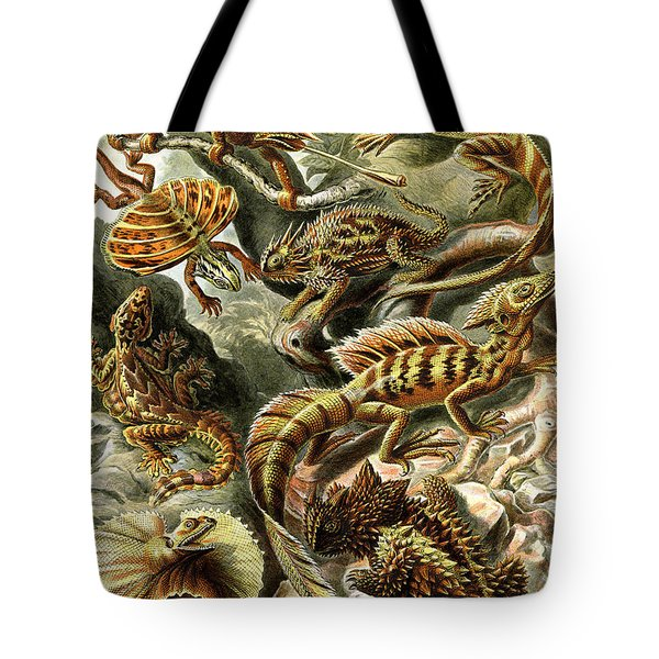 Lizards Lizards And More Lizards Tote Bag by Unknown