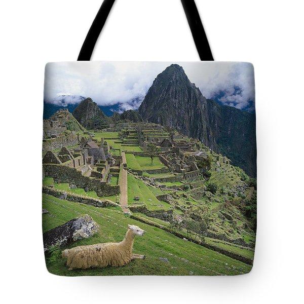 Llama At Machu Picchus Ancient Ruins Tote Bag by Chris Caldicott