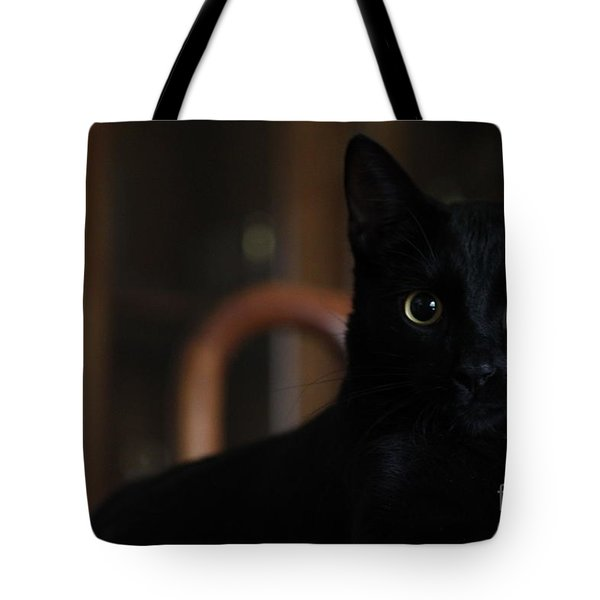 Loki The God Of Mischief  Tote Bag by Jennifer Doll