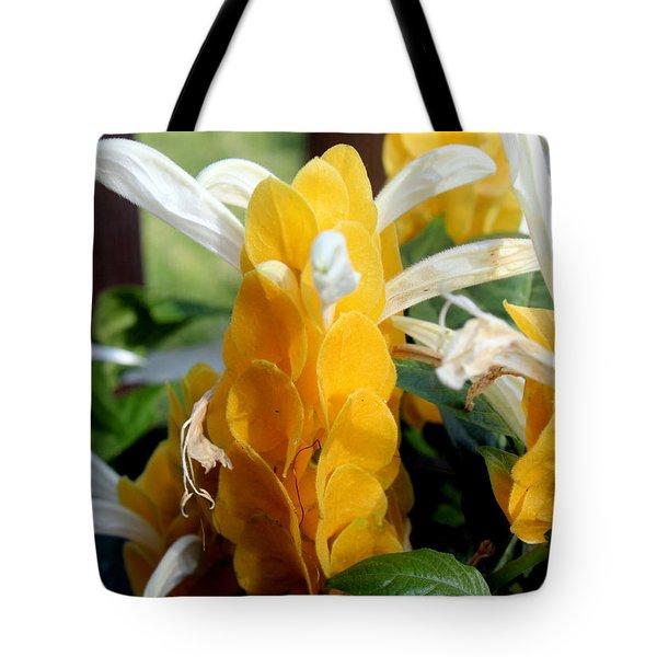 Lollipop Plant  Tote Bag by Kathy  White