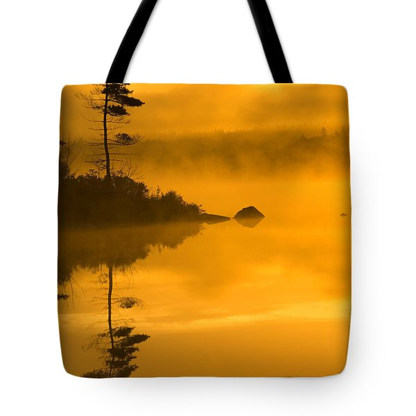 Lone Pine And Misty Lake At Dawn Tote Bag by Irwin Barrett