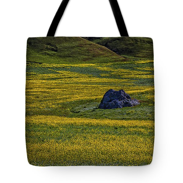 Lone Stone Tote Bag by Garry Gay