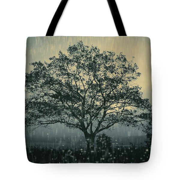 Lone Tree and Stormy Evening Tote Bag by David Gordon