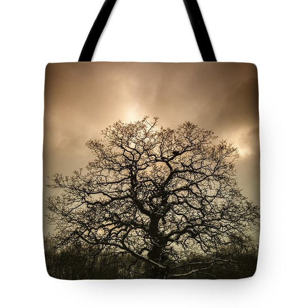 Lone Tree Tote Bag by Amanda And Christopher Elwell