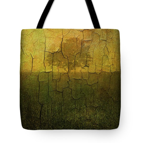 Lone Tree in Meadow -Textured Tote Bag by David Gordon
