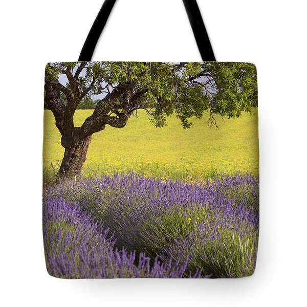 Lone Tree In Provence Tote Bag by Brian Jannsen