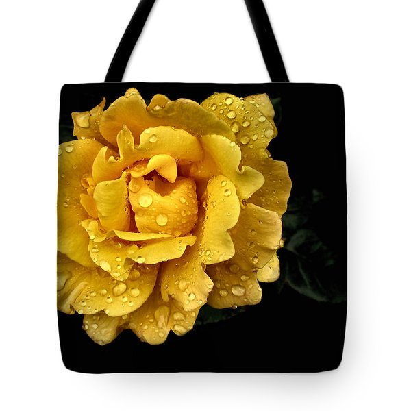 Lone Yellow Rose Tote Bag by Stephanie Hollingsworth