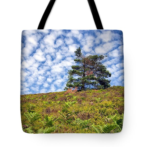 Lonely Tree Tote Bag by Adrian Evans