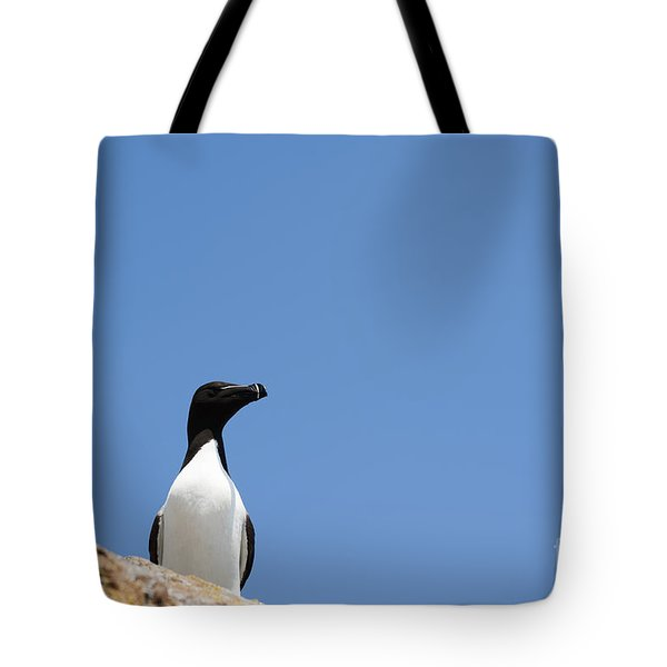 Look At Me Tote Bag by Anne Gilbert