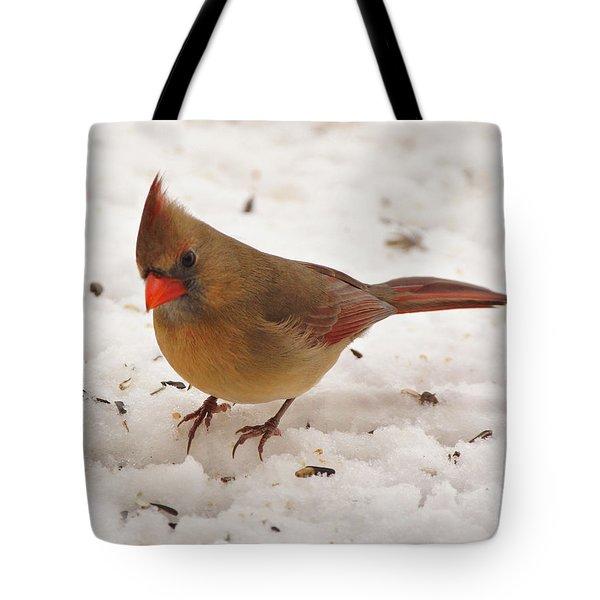 Look at You Tote Bag by Sandy Keeton