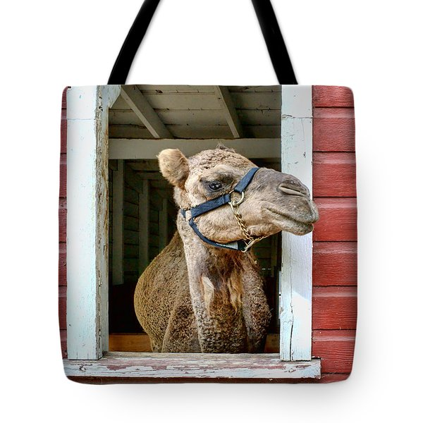 Look Left Tote Bag by Nikolyn McDonald