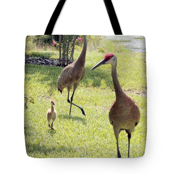 Looking for a Handout Tote Bag by Carol Groenen