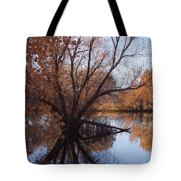 Looking Glass Tote Bag by Vicki Pelham