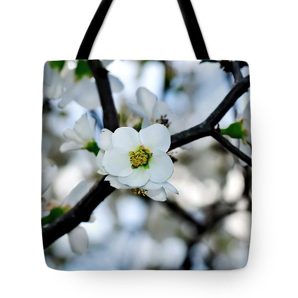 Looking Through The Blossoms Tote Bag by Kaye Menner