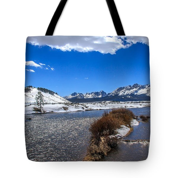 Looking Up The Salmon River Tote Bag by Robert Bales