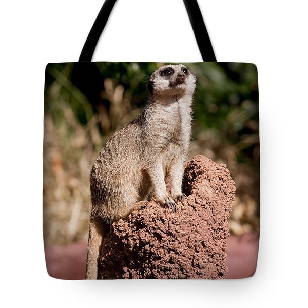 Lookout Post Tote Bag by Michelle Wrighton