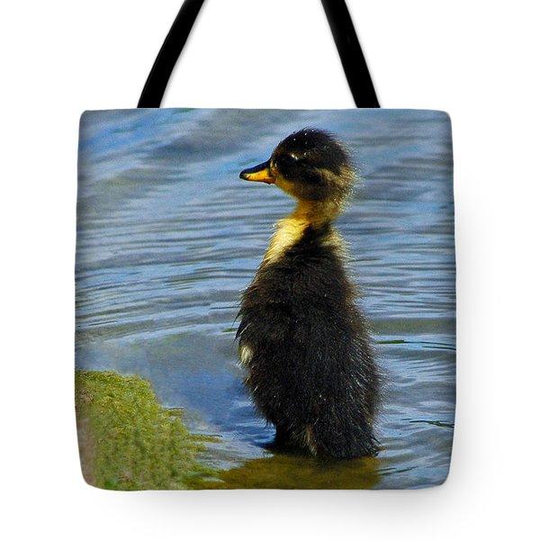 Lost Duckling Tote Bag by Olivia Hardwicke