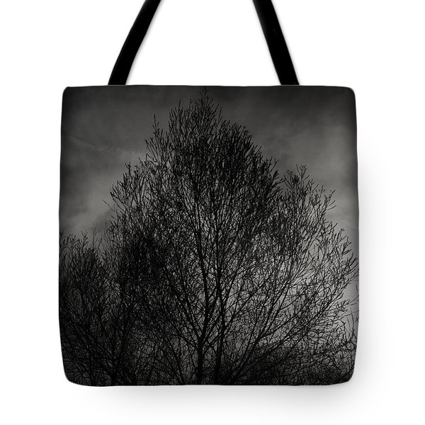 Lost in moments Tote Bag by Taylan Soyturk