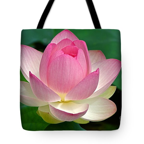 Lotus 7152010 Tote Bag by Byron Varvarigos